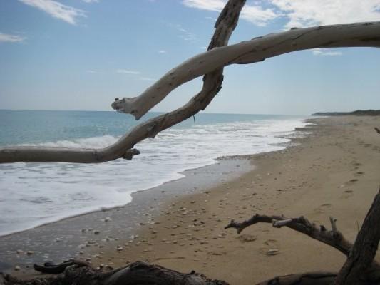 Spiaggia_borgo_bonsignore