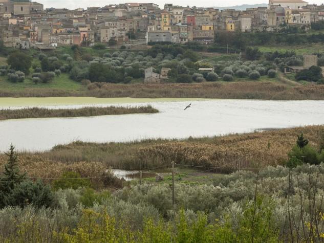 Riserva naturale Lago Soprano (4)