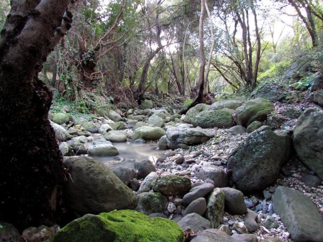 Riserva naturale integrale Complesso speleologico (3)