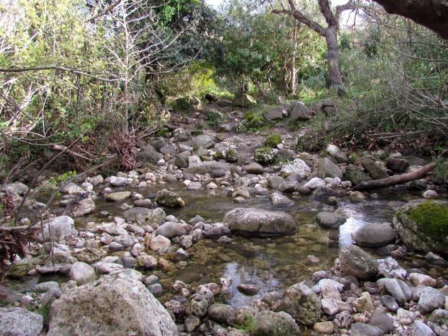 Riserva naturale integrale Complesso speleologico (6)