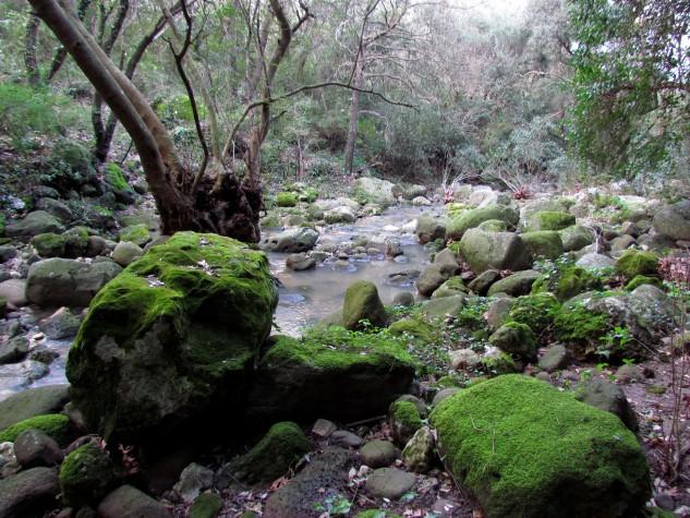 Riserva naturale integrale Complesso speleologico