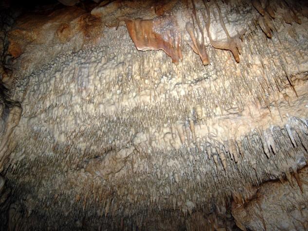 Riserva naturale integrale Grotta Monello (12)