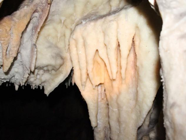 Riserva naturale integrale Grotta Monello (14)