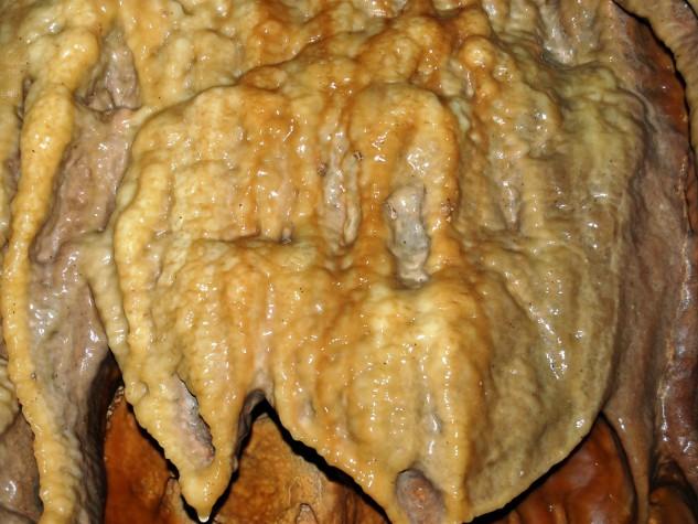 Riserva naturale integrale Grotta Monello (2)