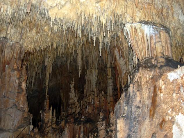 Riserva naturale integrale Grotta Monello (6)