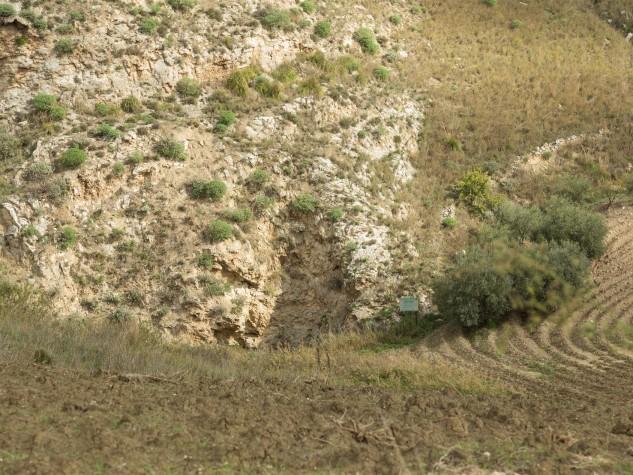 Riserva naturale integrale Monte Conca (10)