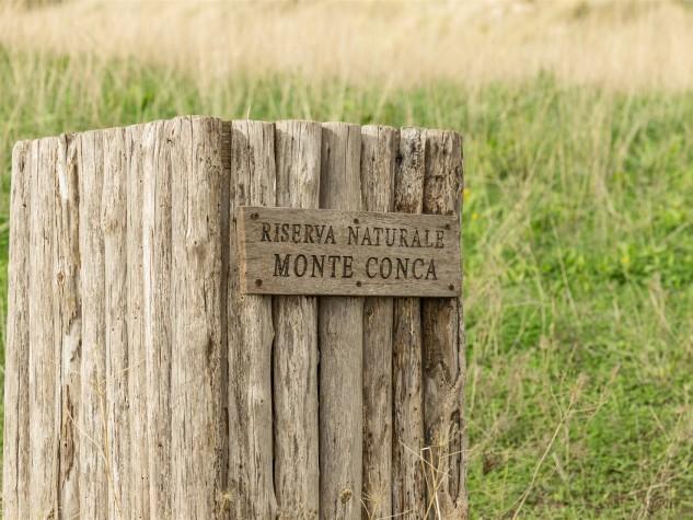Riserva naturale integrale Monte Conca (15)