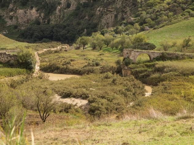 Riserva naturale integrale Monte Conca (6)