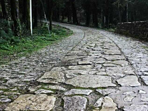 Riserva naturale orientata Bosco di Alcamo (2)