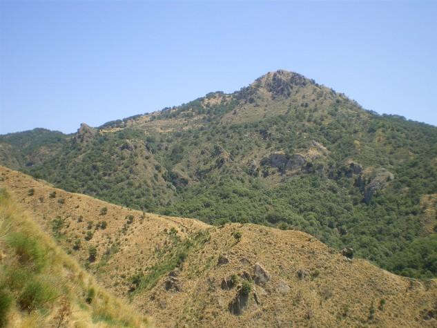Riserva naturale orientata Bosco di Malabotta (5)