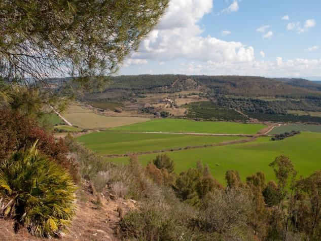 Riserva naturale orientata Bosco di Santo Pietro
