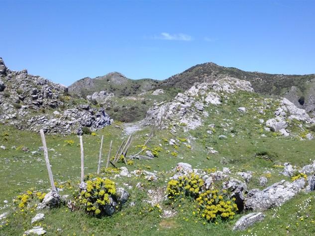 Riserva naturale orientata Fiumedinisi e Monte Scuderi (14)