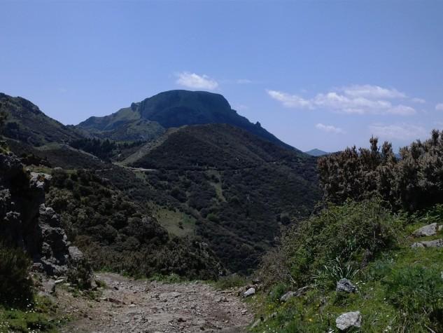 Riserva naturale orientata Fiumedinisi e Monte Scuderi (6)