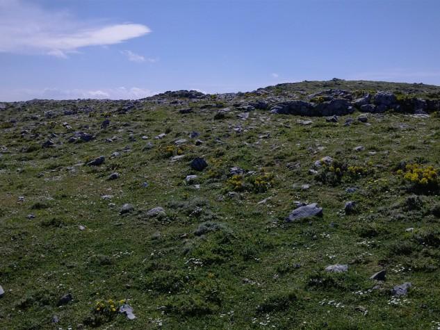 Riserva naturale orientata Fiumedinisi e Monte Scuderi (7)