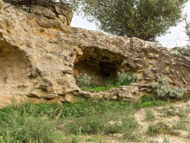 Riserva naturale orientata Monte Capodarso (2)