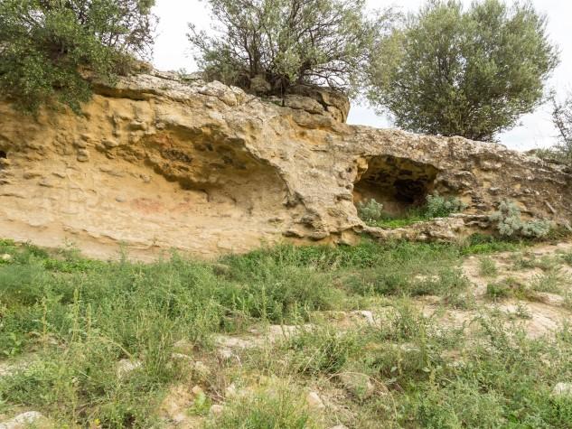 Riserva naturale orientata Monte Capodarso (3)