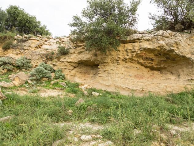 Riserva naturale orientata Monte Capodarso (4)