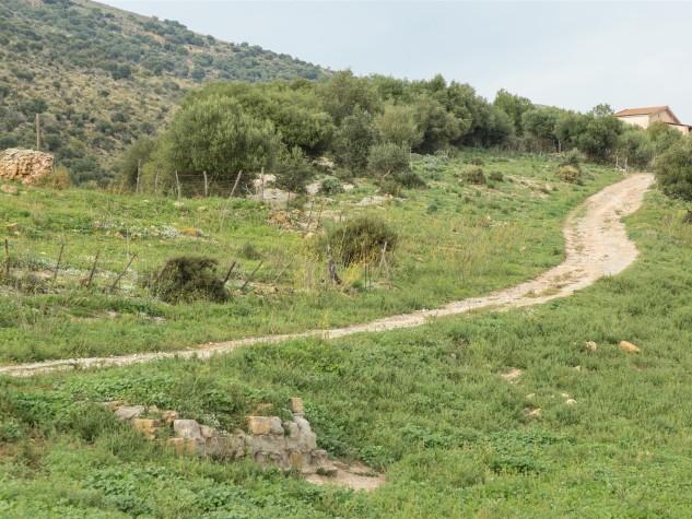 Riserva naturale orientata Monte Capodarso (8)