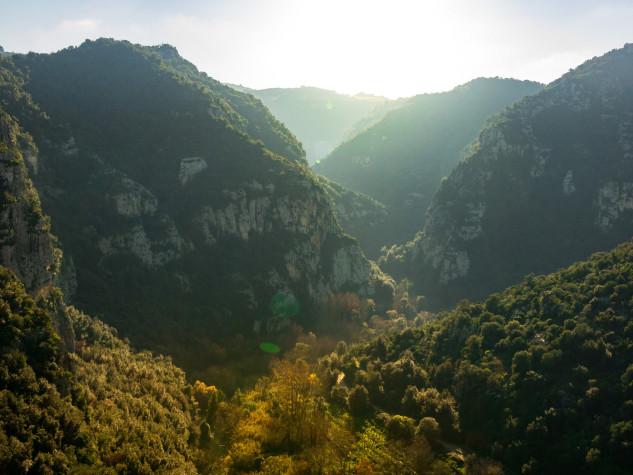 Riserva naturale orientata Pantalica, Valle (11)