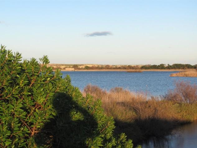 Riserva naturale orientata Saline di Priolo (5)