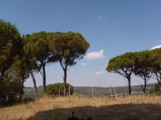 Rossomanno-Grottascura-Belli2