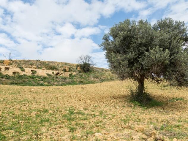 Area archeologica di Sabucina (3)