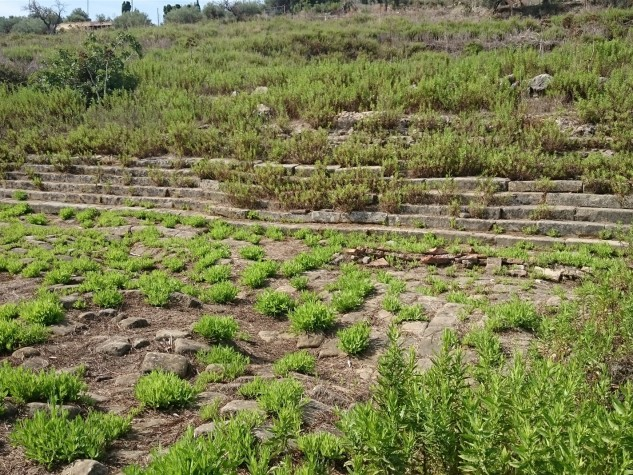 Area archeologica e Teatro antico di Tindari (28)